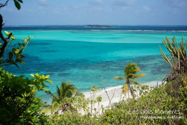 Tobago Cays bis 3