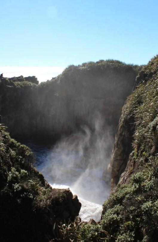 Nouvelle Zélande - Punakaiki - les lubies de louise (14 sur 25)