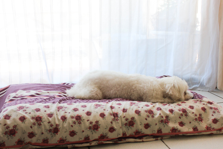 un tapis de princesse pour flora diy les lubies de louise. Black Bedroom Furniture Sets. Home Design Ideas