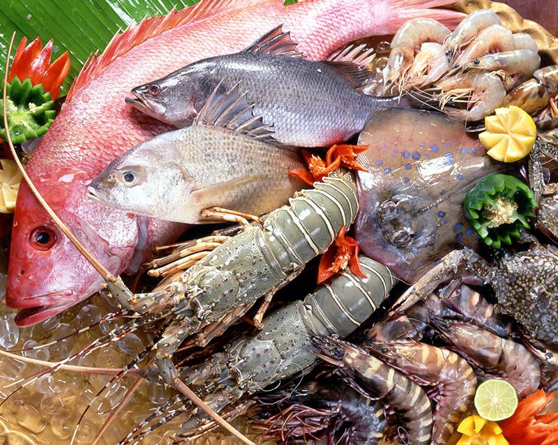 Quais são os peixes e frutos do mar que têm menos mercúrio ─ e são mais saudáveis