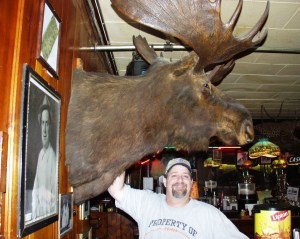 Big Moose at Ole's (and one with antlers too)