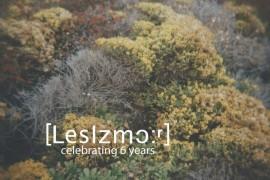 7 - LIZM07_web-1-800x510-270x180