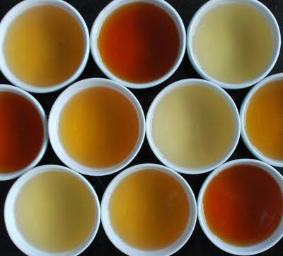tea colour 0053b