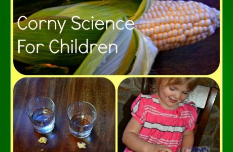 Corny Science Collage