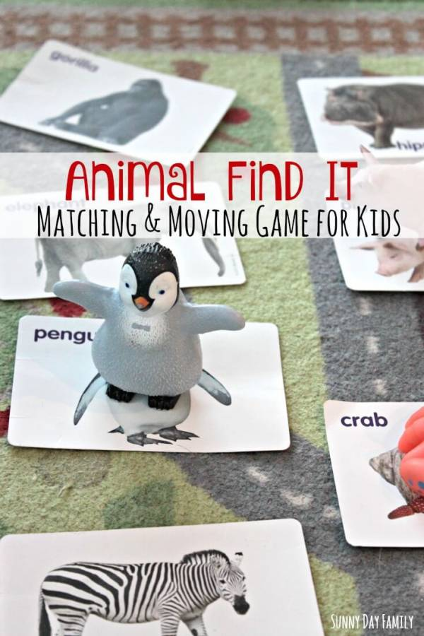 animal find it game