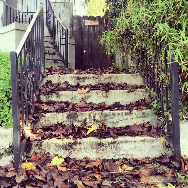 #stepstothewest #berkeley #westberkeley