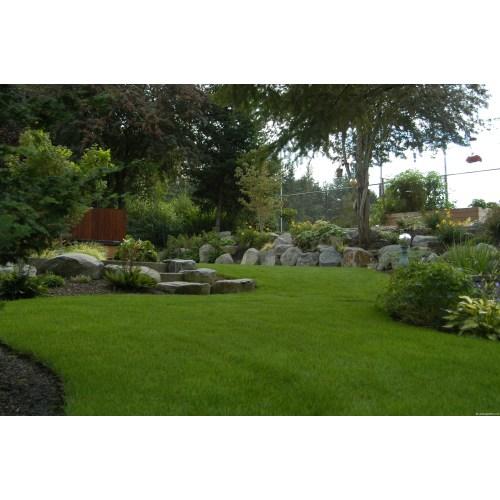 Medium Crop Of Backyards Without Grass
