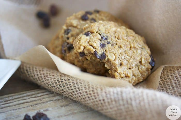 Paleo Oatmeal Chocolate Chip Cookies II