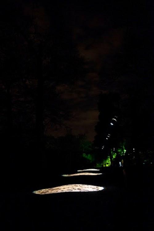 Christmas at Kew 29