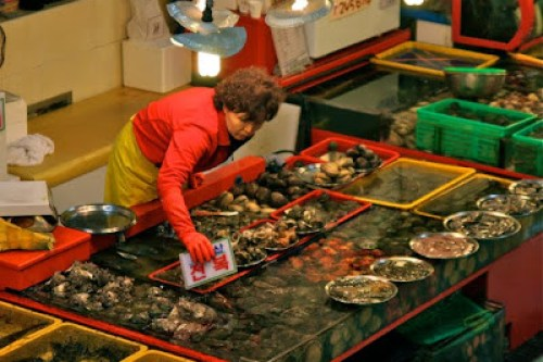 jalgachi fresh fish restaurant, where to eat seafood and sashimi in busan, picking your a fish for your plate