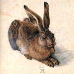 durer rabbit Sanat ve Sanatçılar  1/7