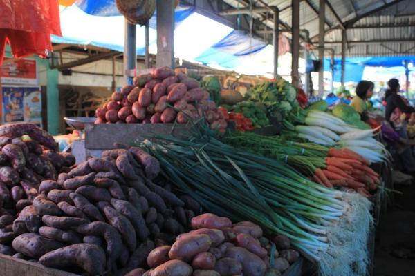 Sayuran Lokal Berastagi