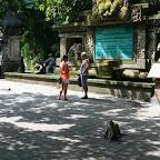 0407_Indonesien_Limberg.JPG