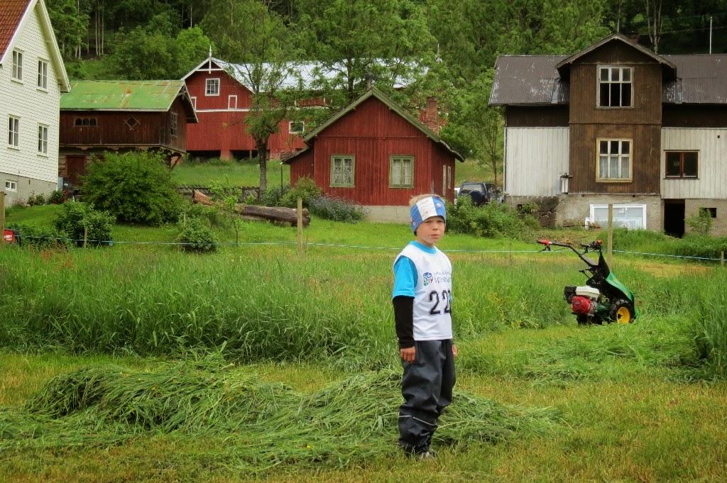 Kosidba u Norveskoj- Turisticka organizacija opštine Ljig166