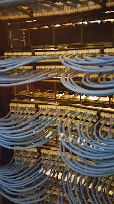 IT Patch Panel in Rare Disease Company