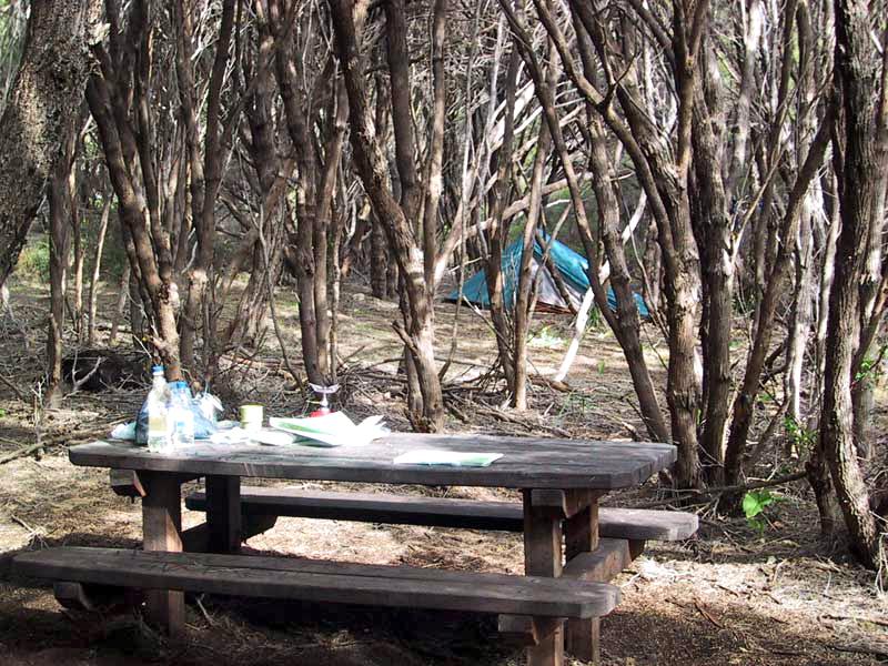 Mt Duckworth Campsite on the Cape to Cape Track