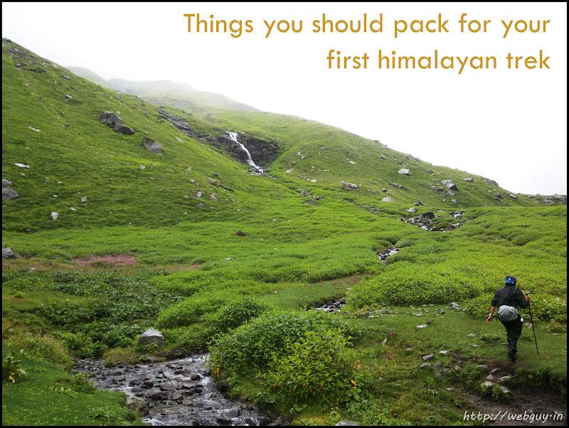 Meadows - Hampta pass trek