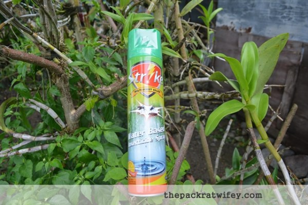 Strike Insects Spray