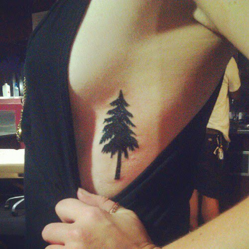 58 coolest tree tattoos designs and ideas for Evergreen tree tattoo