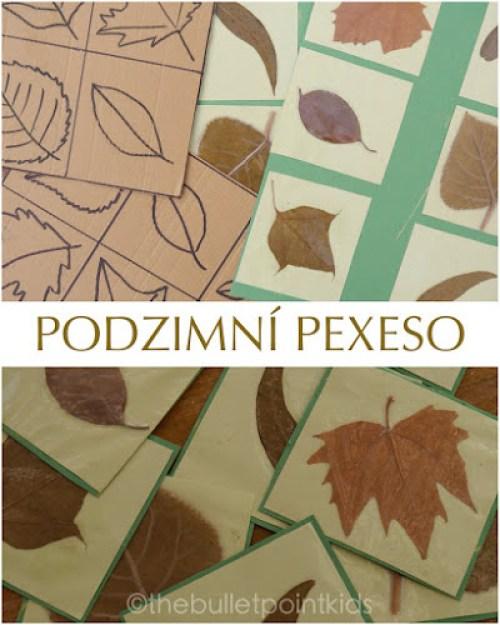 Pexeso z podzimního listí