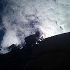 Climbing into the sky.