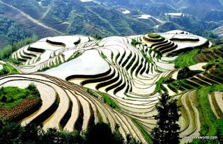 Dragon's backbone Rice Terraces, Longsheng province