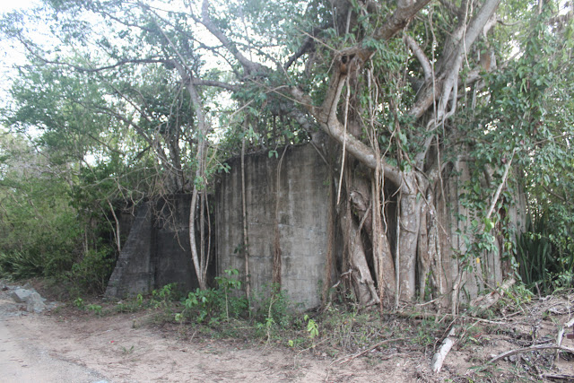 abandoned vieques