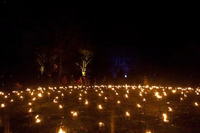 Christmas at Kew 34