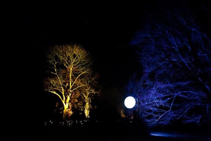 Christmas at Kew 38