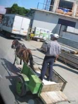 Horse & Cart-3.JPG