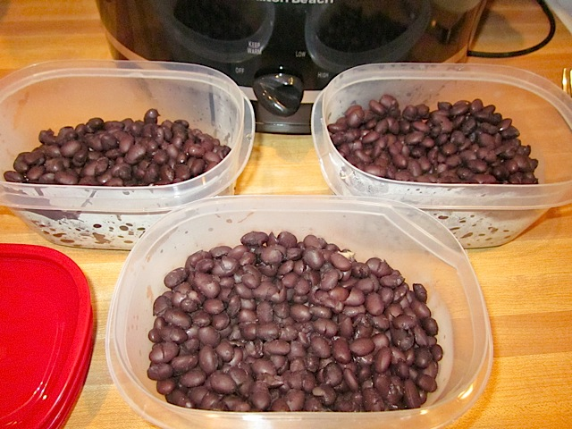cooked beans for freezing