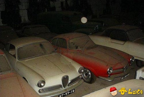 dusty-rare-car-collection-2-11