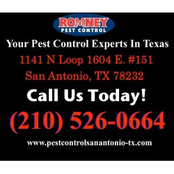 Small Crop Of Romney Pest Control