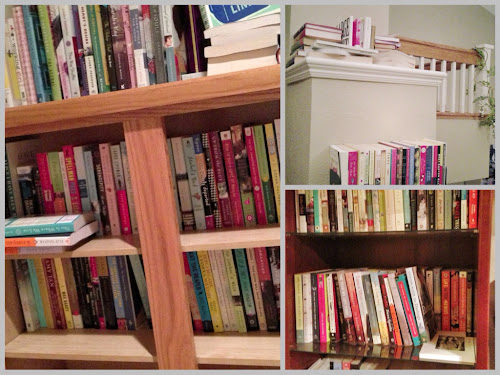 TBR/Books in Waiting (collage) www.3rsblog.com