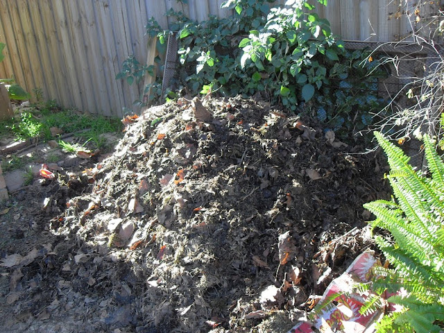 Coffee Grounds in Compost (4/6)