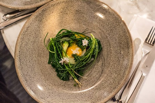 Æggeblomme, kål, broccoli, brændt porrecreme -The lobby på kurhotel skodsborg - Mikkel Baekgaards Madblog