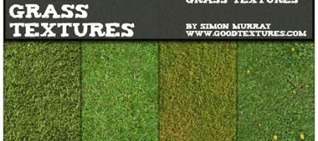 [Textures整理]草地、草叢材質集-1