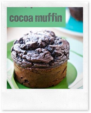protein cocoa muffin