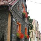 Flowers on windows painted orange.