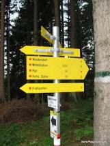 Adventure to Top - Hopfgarten-2.JPG