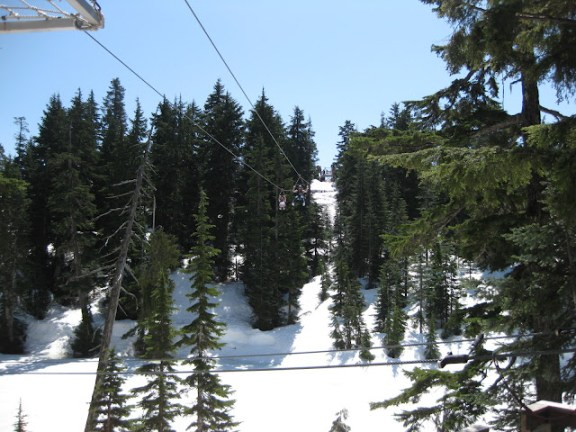 Zipline At Grouse Mountain Vancouver
