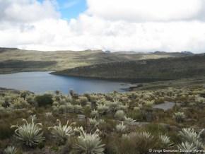 Laguna de Chisacá, Páramo de Sumapaz