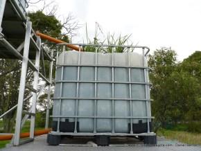Humedal artificial, UN