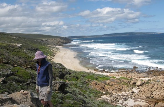 Looking south from above Kabbijgup Beach, Cape to Cape Track