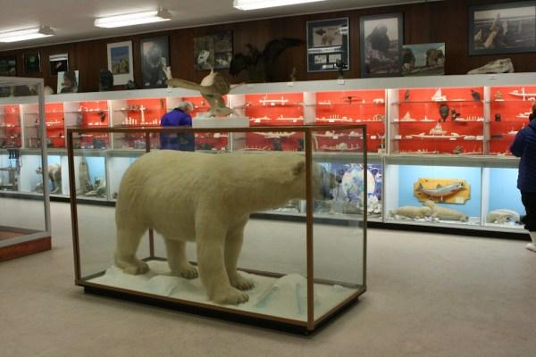 Klein aber fein - Das Eskimo Museum in Churchill