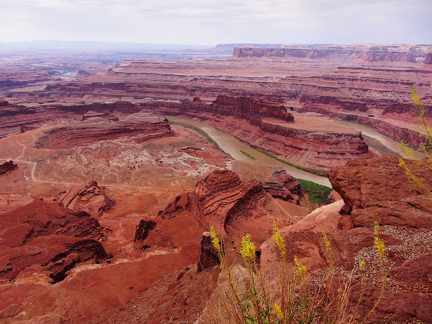 Colorado River from Dead Horse Point.jpg