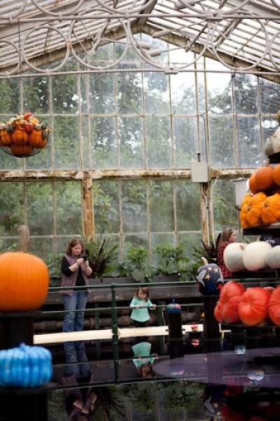 Kew Gardens Pumpkins 7