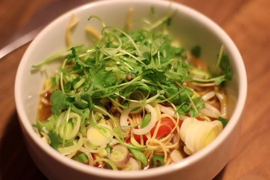 Kinesisk inspireret andesuppe med nudler, soja, chili og ingefær