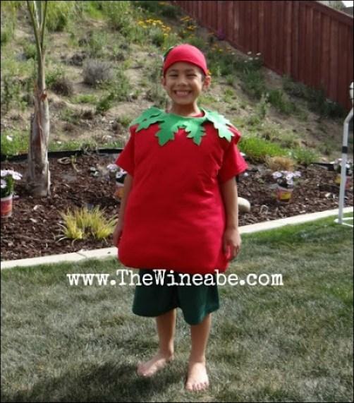 tomato costume easy DIY