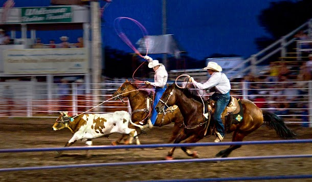 Team Roping - Midwest Rodeo